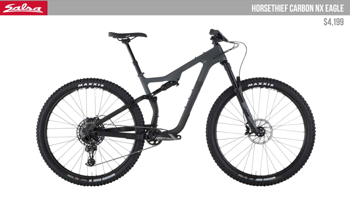 Salsa Horsethief NX Eagle