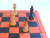 Name:  how_to_play_chess_checkmate.jpg Views: 213 Size:  8.1 KB