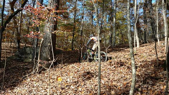 OCC Bike Thread V14-hpi_toward_rox.jpg