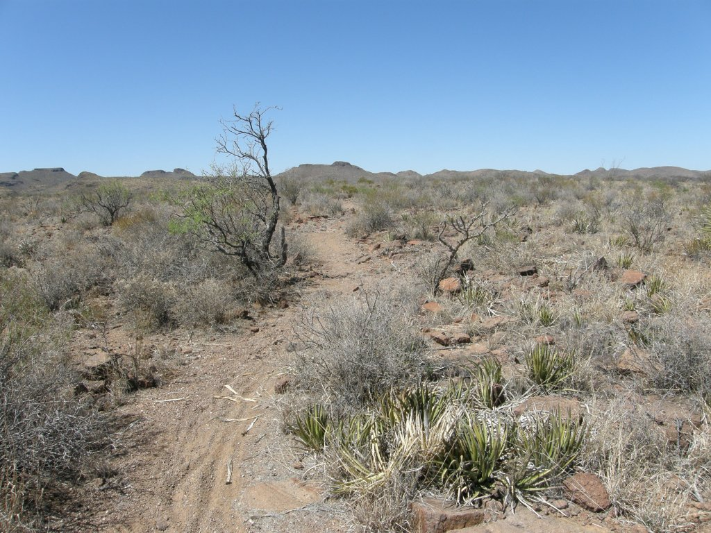 Big Bend Ranch State Park-httrail.jpg