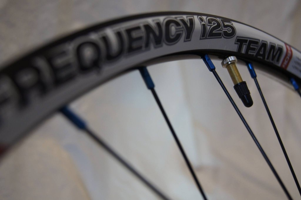 Lets see some blinged out wheelsets..I9,CK,Hope..anything goes!-hubsessed-cycle-works-wtb_frequency_team_i25.jpg