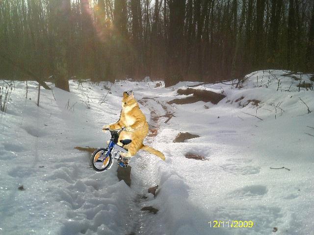 NEPMTBA mOOn lake park ride, ski, snowshoe 12/12/09-huckin_snow.jpg