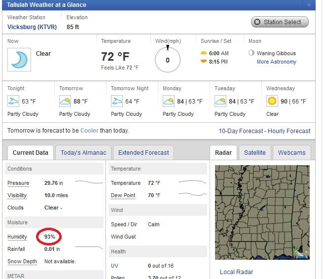 But,-humidity.jpg