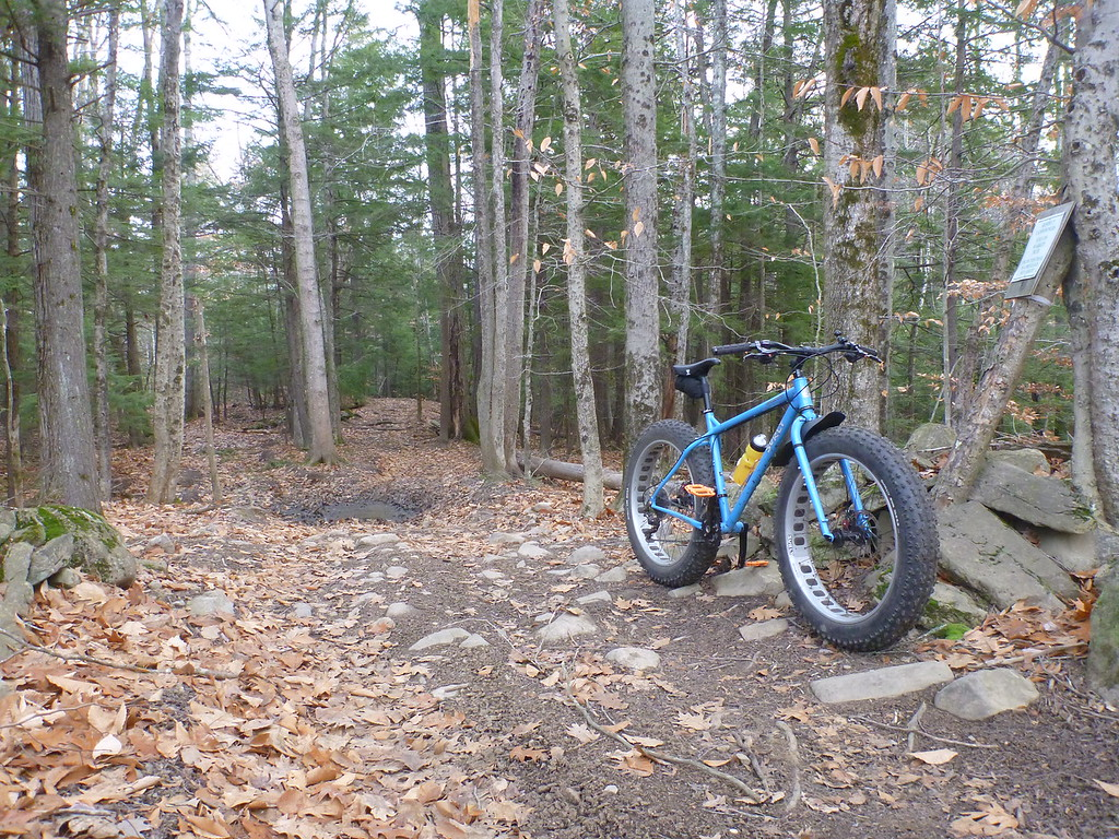Global Fatbike Day! December 2. Where you riding?-i-4n8fhq4-xl.jpg