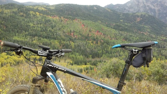 2013 Giant Anthem Advanced X29er 0 Ride Report-i-those-trees-not-long-before.jpg
