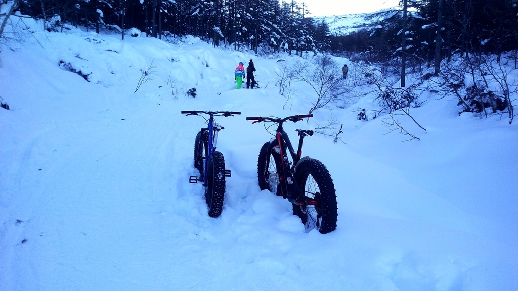 Global Fat-Bike Day. Congratulations from the Russian fat-bikers community.-i9yx-3oses0.jpg