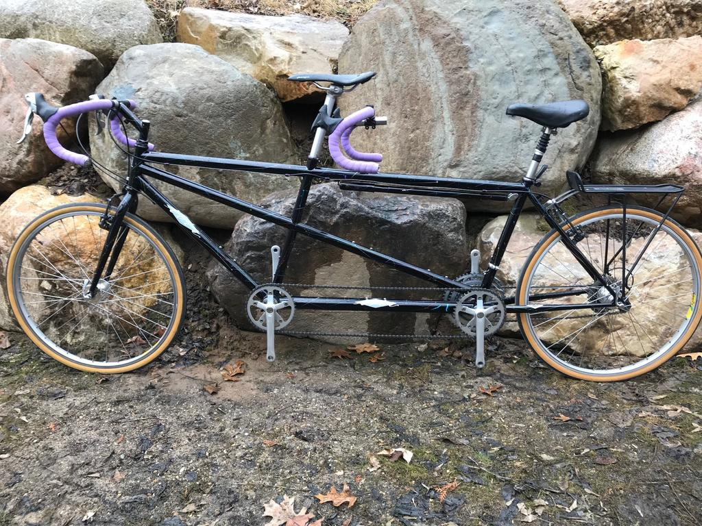 New-to-us, immaculate Ibis Cousin It tandem-ibiscousinit.jpg