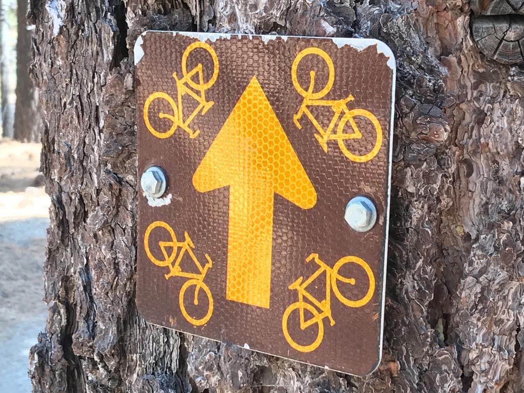 Tahoe to Mammoth Trail - looking for singletrack-icg0fhlisjao2-6k5u-6wg_orig.jpg