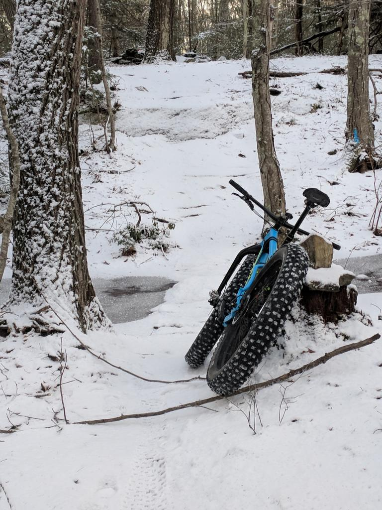 Daily fatbike pic thread-icy-fat.jpg