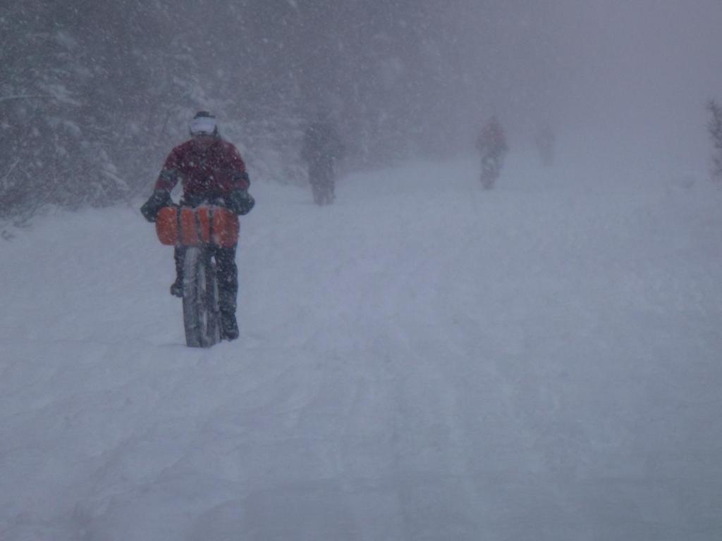 Iditarod Trail Invitational 2012-iditarod-invitational-jeff-o-pete-tim.jpg