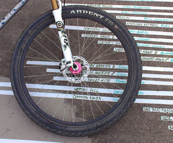 (Cheap) Chinese Carbon Rims?-illnacord-mtbr-trade-c.jpg
