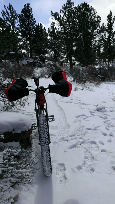 Curt Gowdy Conditions-imag0003-451x800-.jpg
