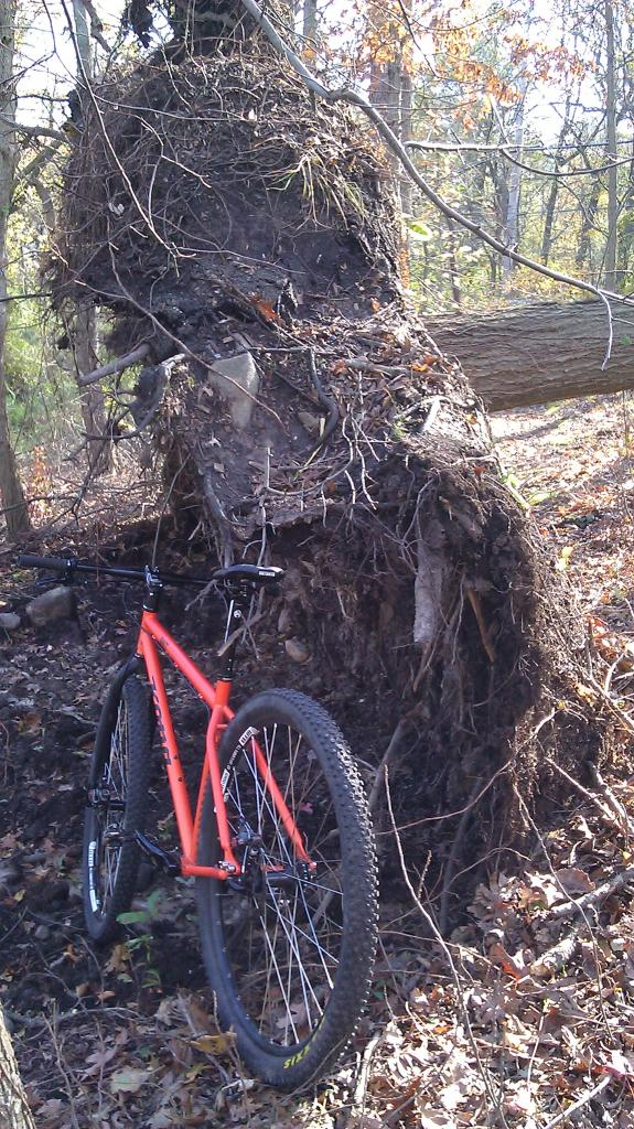 29ers In The Fall-imag0006.jpg
