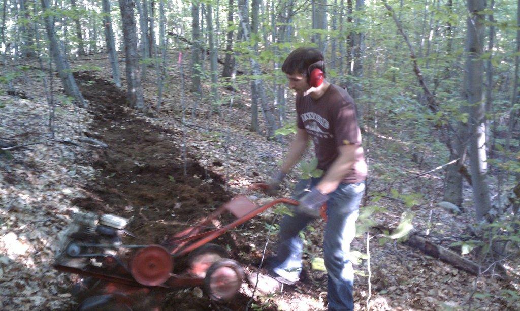 breaking new trail with tiller?-imag0019.jpg