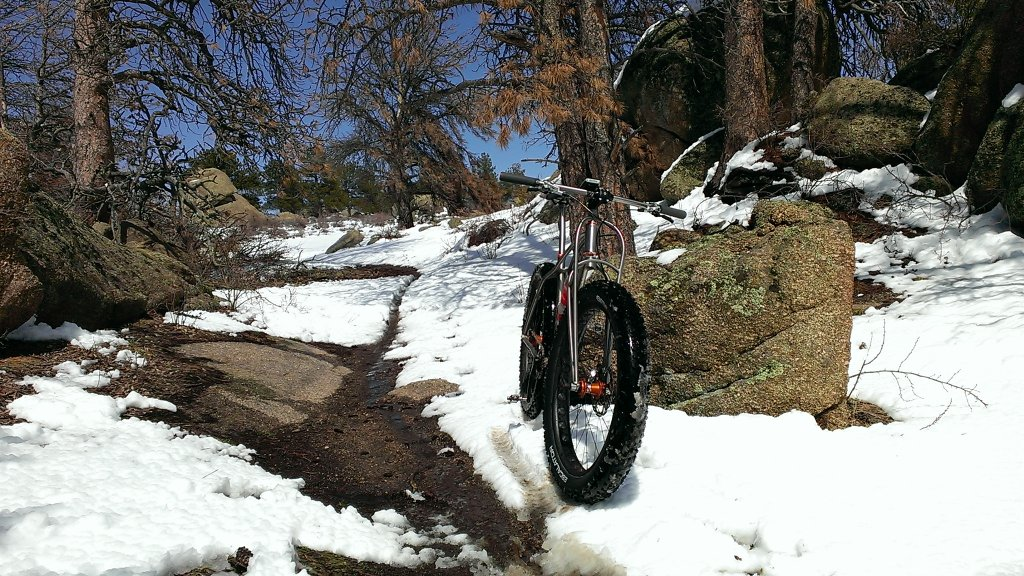 Curt Gowdy Conditions-imag0049.jpg