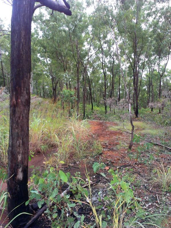 Charles Darwin National Park-imag0190-1.jpg