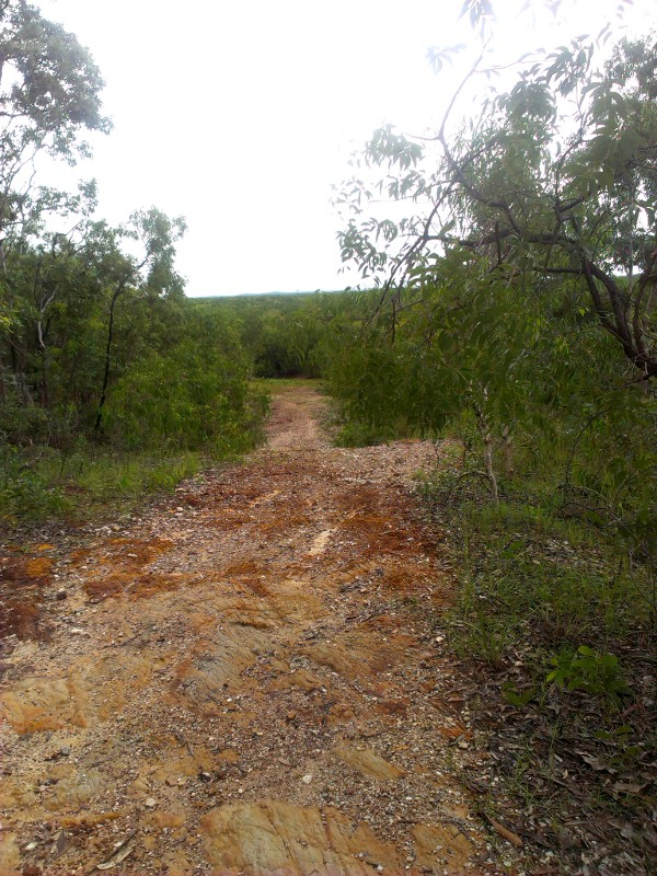 Charles Darwin National Park-imag0192-1.jpg