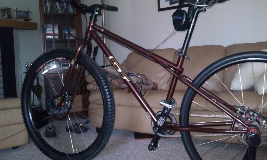 New Bikesdirect Gravity 29Point1?-imag0192.jpg