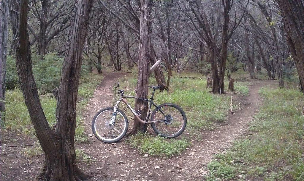 I've got your Trail Bike, right here...(Austin, TX neighborhood trails)-imag0248.jpg