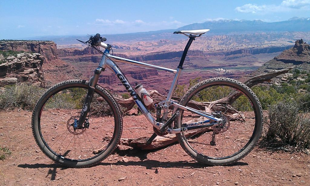 Custom Anthem X 29ers...-imag0311.jpg
