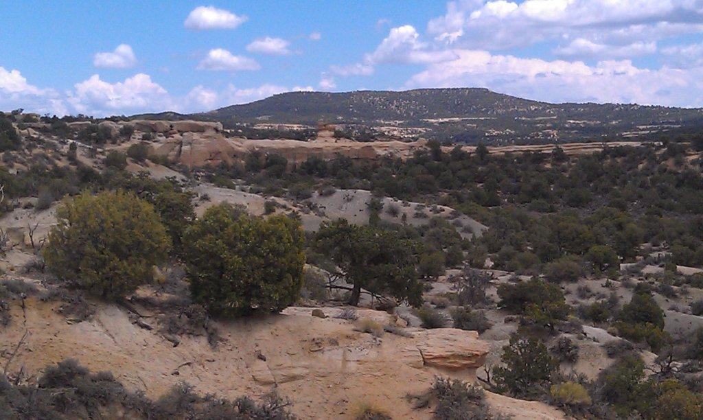 The NM Trail Pix Thread-imag0345.jpg