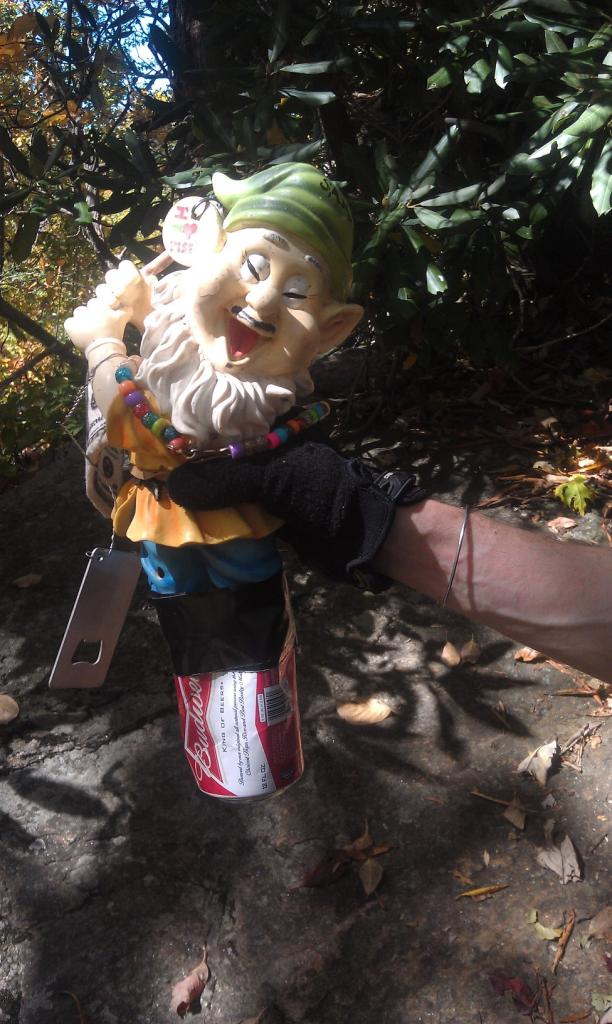 Adventures with the Pisgah Gnome-imag0351.jpg