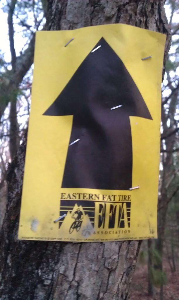 Eastern Fat Tire Blazes in LLF?-imag0368.jpg