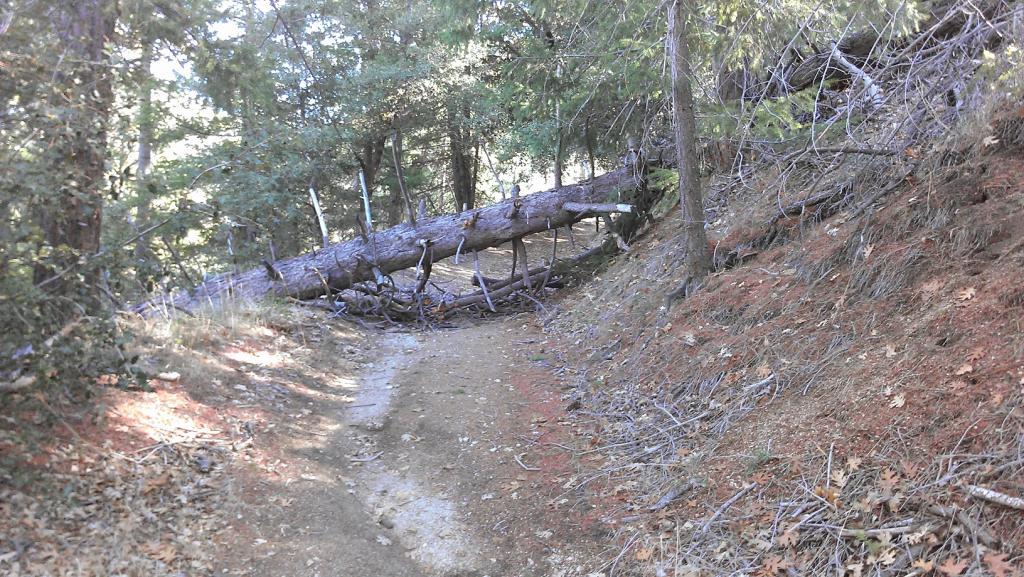 Santa Ana River Trail (SART) 12062012-imag0383.jpg