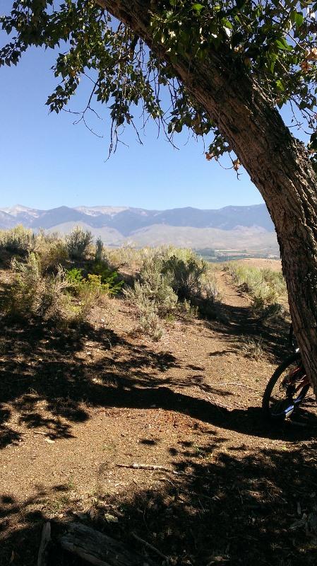 Salmon mountain biking-imag0446-1-449x800-.jpg