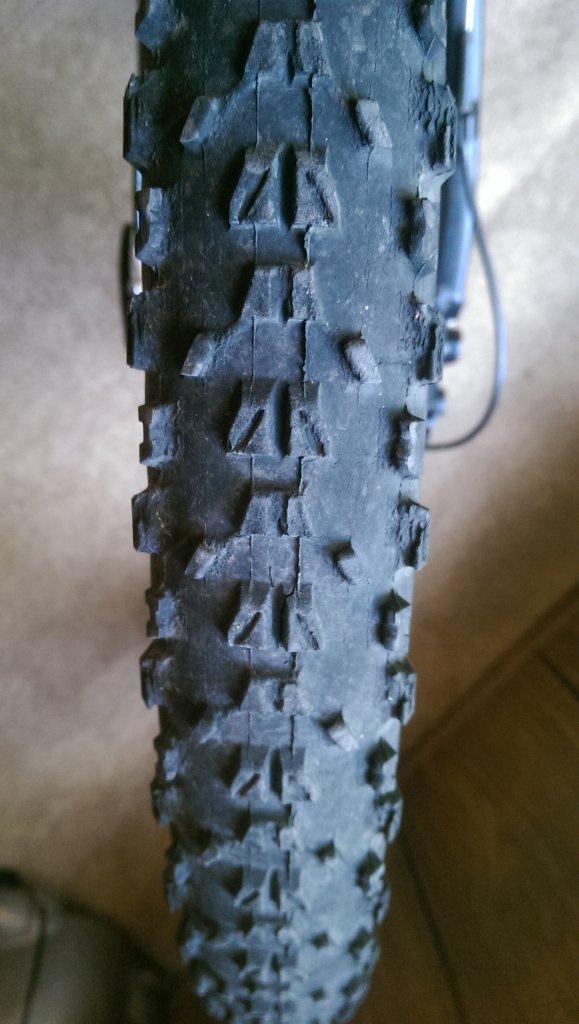 Tire for texas MTB?-imag0448.jpg