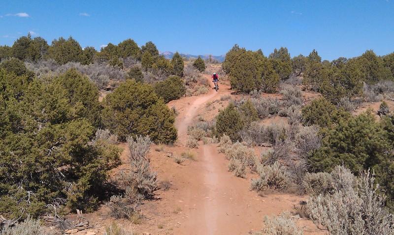 Great mounatin biking and sking locations?-imag0519z.jpg