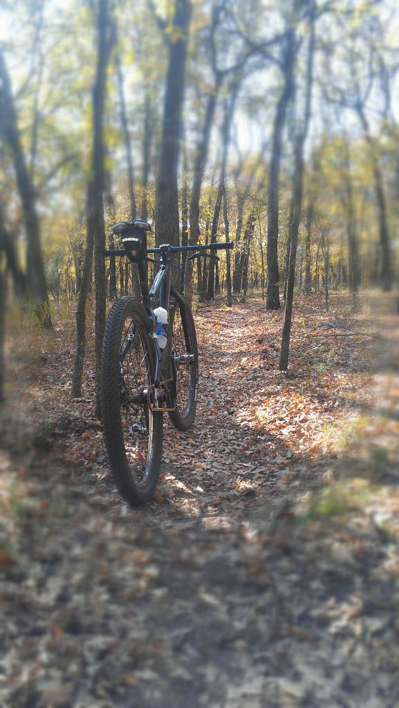 29ers In The Fall-imag0542.jpg