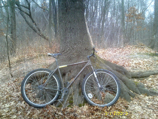 1/17/10 Sundays Ride-imag0548.jpg