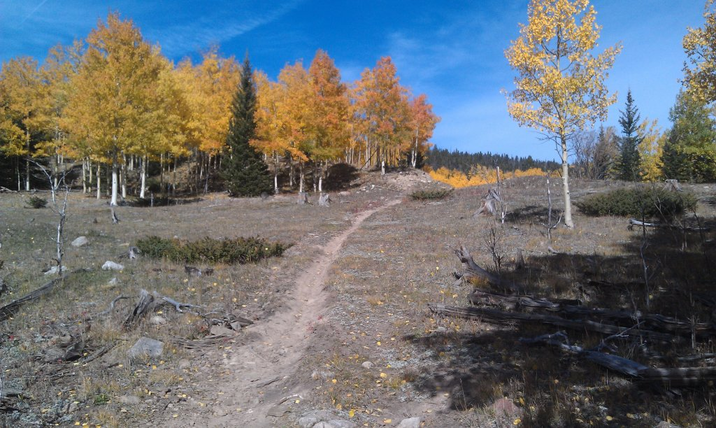 The NM Trail Pix Thread-imag0813.jpg
