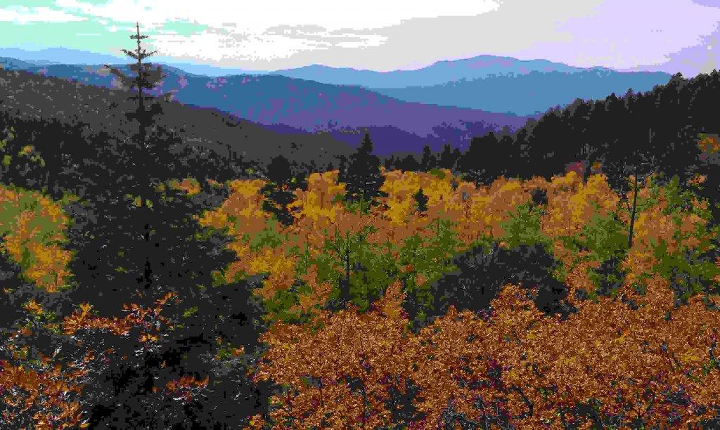The NM Trail Pix Thread-imag0818.jpg