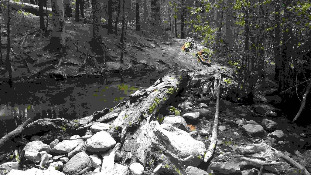 The NM Trail Pix Thread-imag0955.jpg