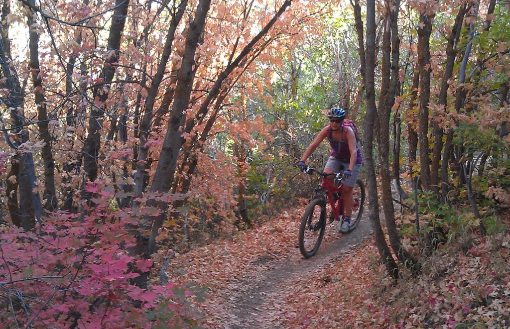 Fall pictures-imag0996.jpg