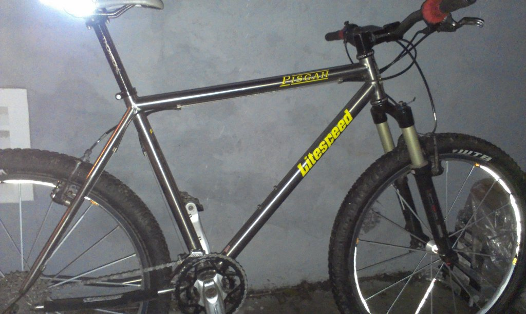 Show Us Your Litespeed/Merlin/Tomac-imag1204.jpg