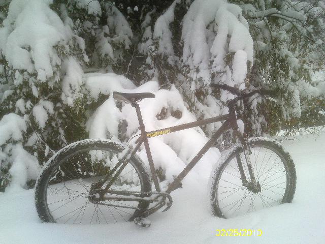Snow Kidding? 2/25/10 Thursday Ride Snowpocalypse-imag1375.jpg