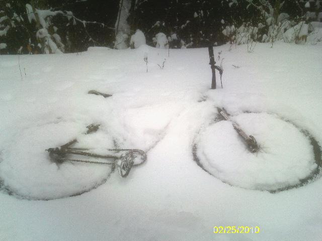 Snow Kidding? 2/25/10 Thursday Ride Snowpocalypse-imag1391.jpg