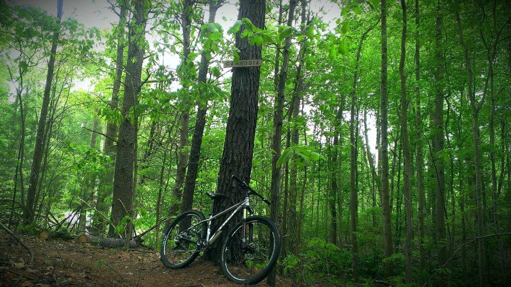 Bike + trail marker pics-imag2686_burst002_1.jpg