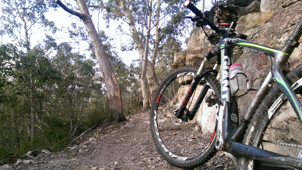 Post your hardtail Giants-imag2716.jpg