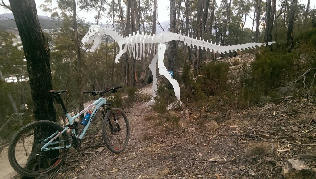 Bike + trail marker pics-imag3682.jpg