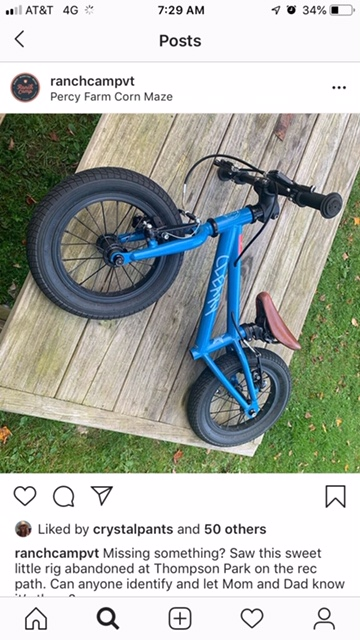 WTB: Cleary Starfish Balance Bike-image-1.jpg