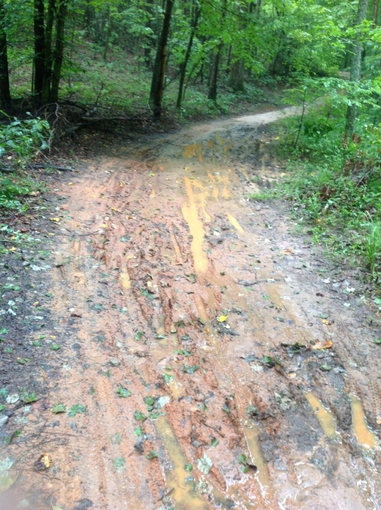 Pisgah Trail Conditions-image-1.jpg