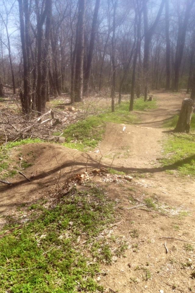 Denton Tx. trails PICS!!!-image-1.jpg