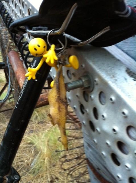 Yellowman game-image-2-.jpeg