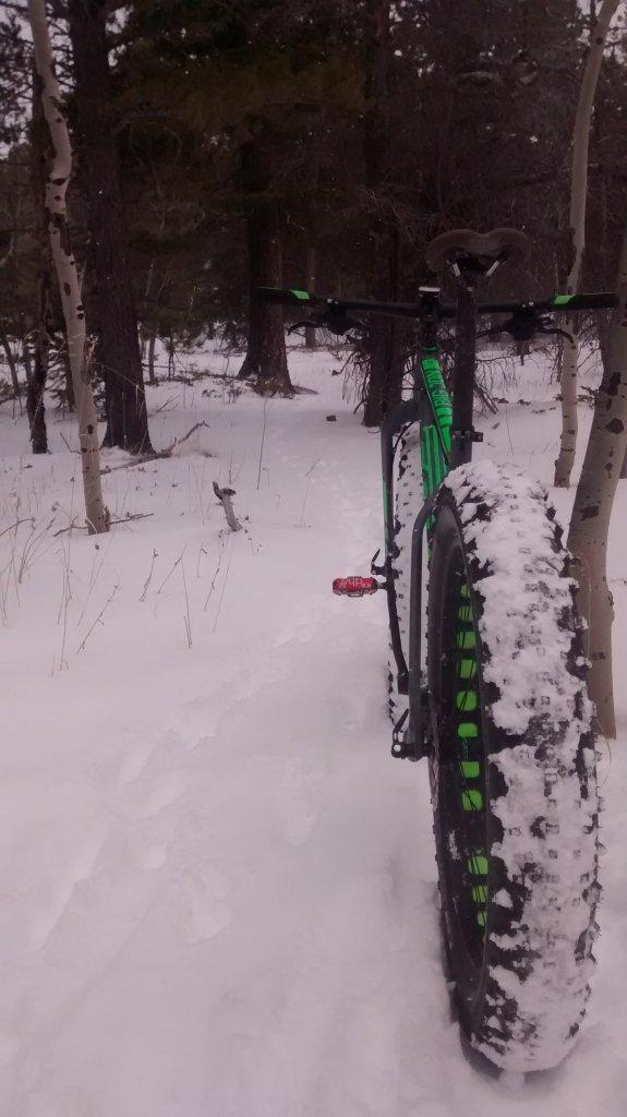 New Scott fat bike: Big Jon-image-24775.jpg