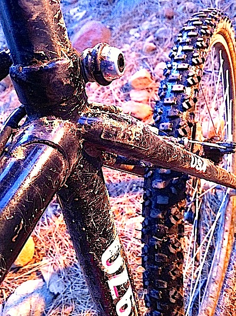 Gum/tan/skin wall tires - let's see them!-image-9.jpeg