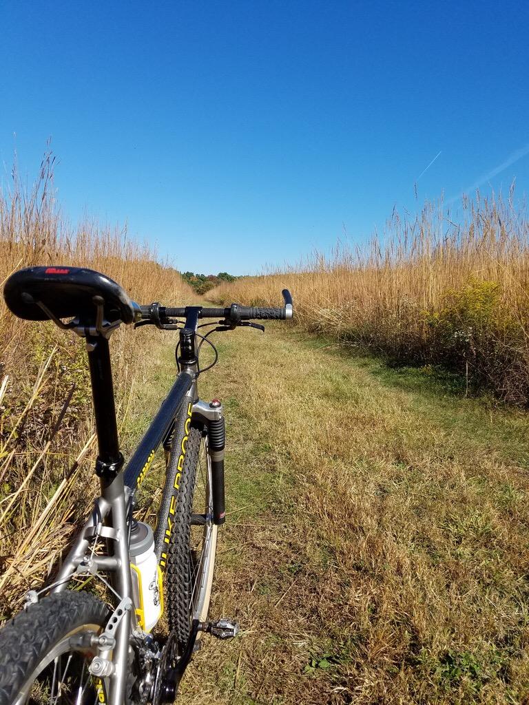 Trail Pics-image.jpeg